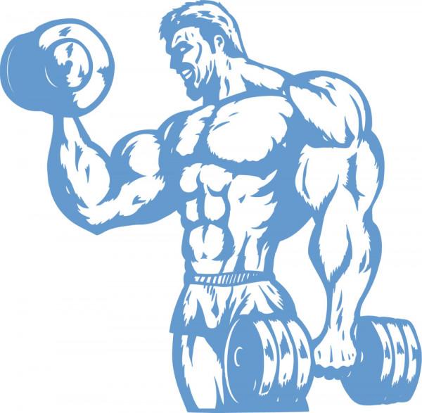 Wandtattoo Sport Fitness für Sporträume