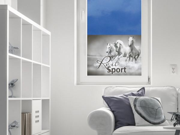 Sichtschutzfolie Reitsport Pferde