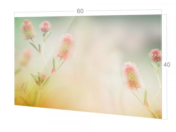 Spritzschutz Küche Glas Dezente Blumen