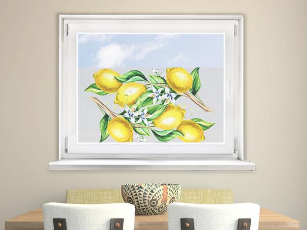 Sichtschutzfolie Küche Gelbe Zitronen