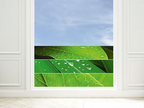 Sichtschutzfolie Blätter Streifen