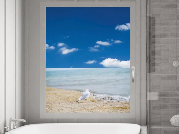 Sichtschutzfolie Möwe am Strand