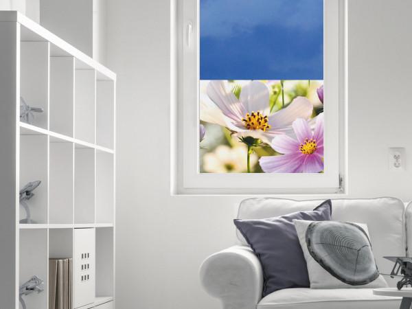 Sichtschutzfolie Blüten Blumen