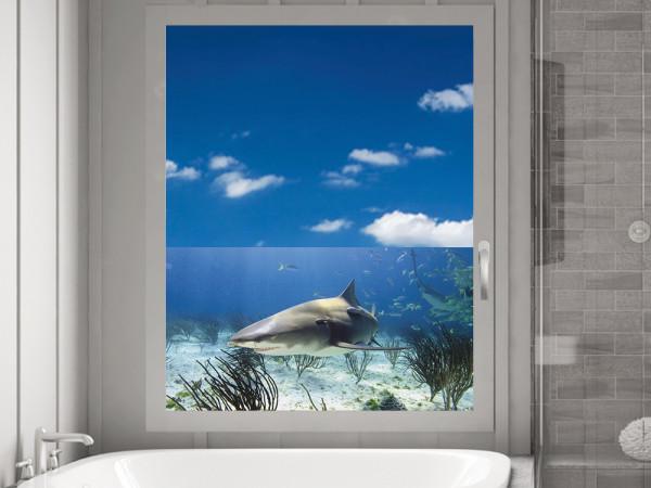 Sichtschutzfolie Hai Unterwasser