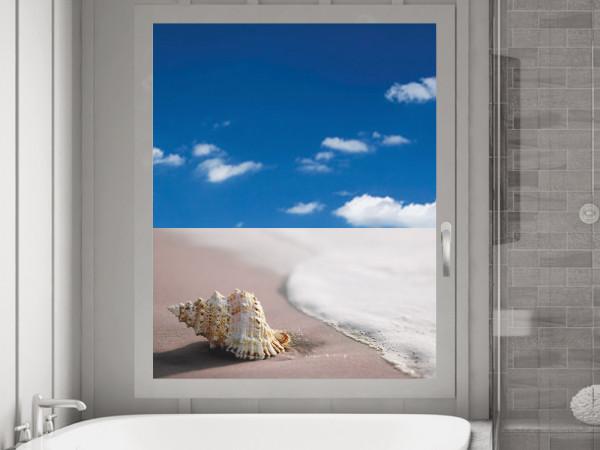 Sichtschutzfolie Muschel am Strand