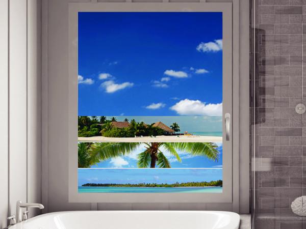 Sichtschutzfolie Palme Urlaub