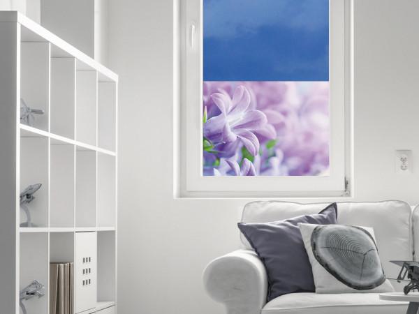 Sichtschutzfolie Blüten lila Blumen