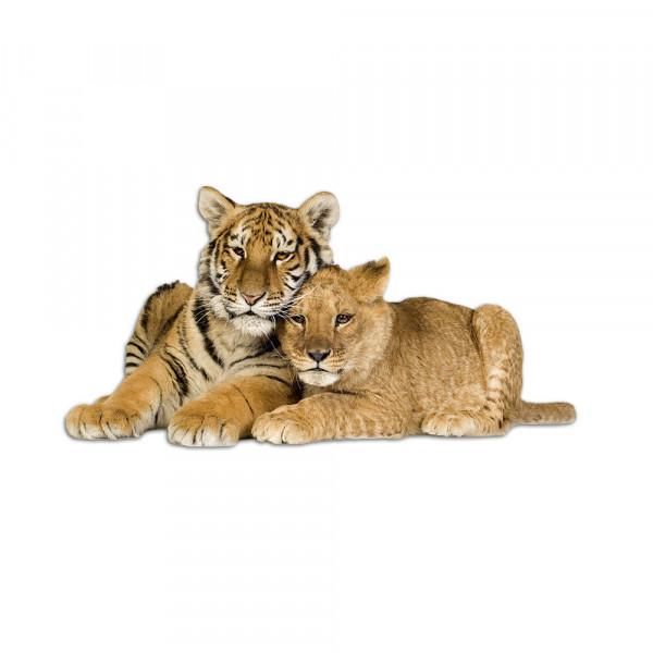 Wandsticker Tiger Löwe Löwenbaby
