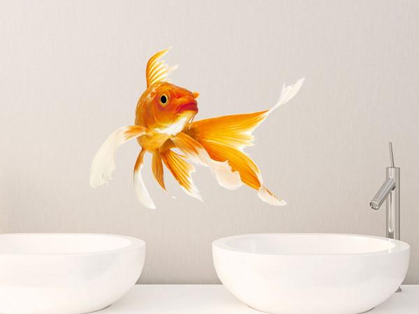Wandsticker Goldfisch Fisch Fische