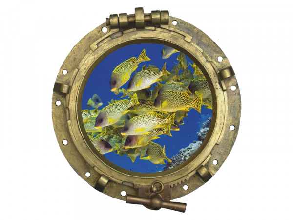 Wandsticker Wandtattoo Wandaufkleber Tiere Bullauge Bilderrahmen Fische