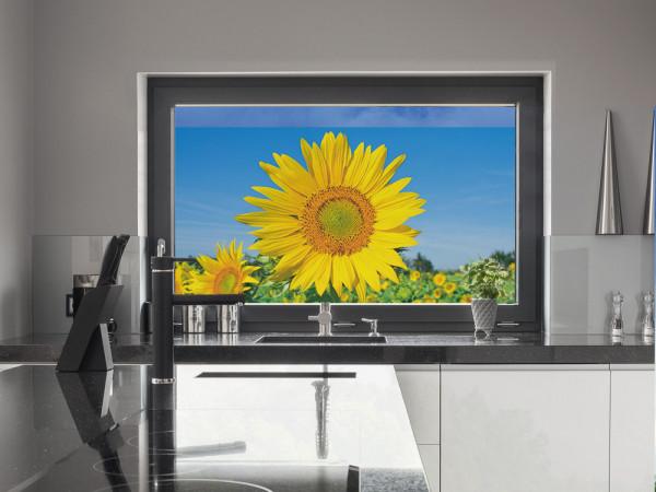 Sichtschutzfolie Sonnenblumen
