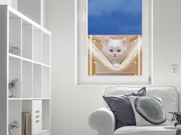 Sichtschutzfolie Katzenbaby Katze