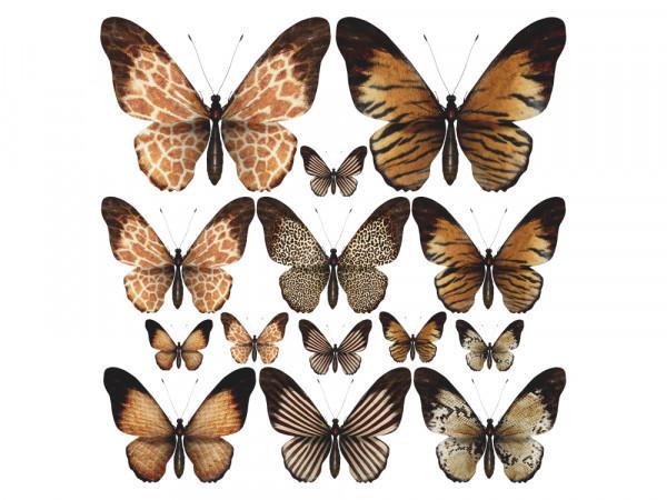 Wandtattoo Set für Wohnzimmer Schmetterlinge Afrika